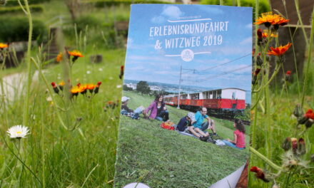Ausflug mit Kindern: Erlebnisrundfahrt mit Postauto, Schiff und Zahnradbahn