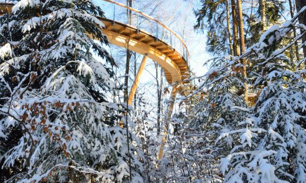 Auch im Winter lohnt sich ein Besuch des Baumwipfelpfades in Mogelsberg in der Ostschweiz