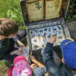 Drei Kinder betrachten in einer Schatzkiste ein Bilderrätsel mit Tierzeichnungen.