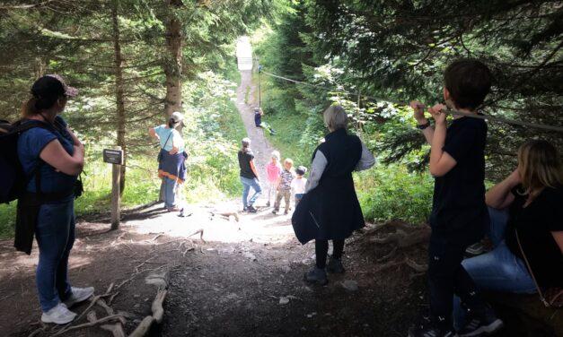 Riesenwald Elm – ein Riesenerlebnis für Jung und Alt