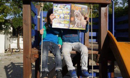 Kra, Kra, Krax-Club! Kinder werden aktiv für Tiere – jetzt kostenlose Mitgliedschaft beim Schweizer Tierschutz