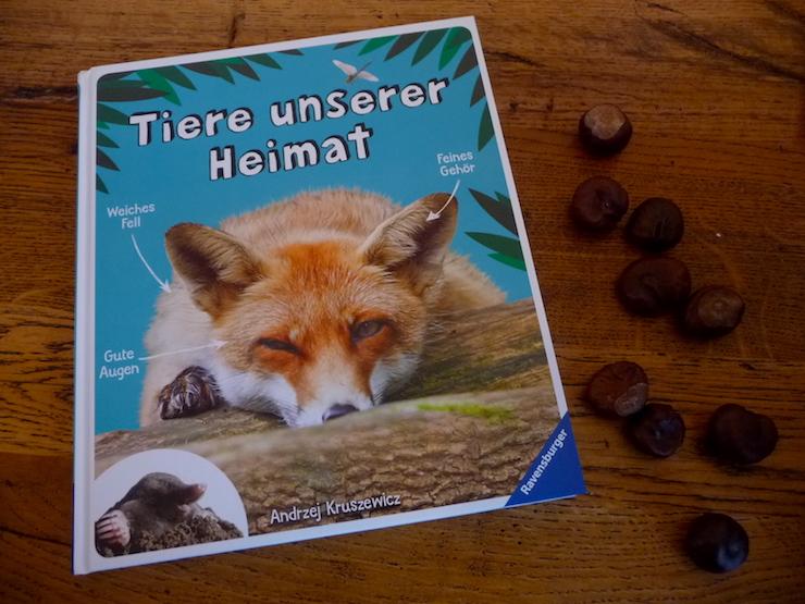 Tiere unserer Heimat – Ein Kinderbuch über die Wildtiere Europas