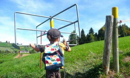 Chnobelweg Hemberg – eine knifflige Wanderung im Neckertal