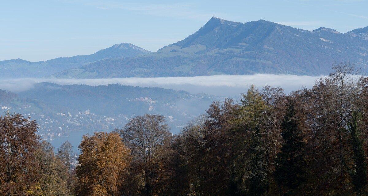 Familienausflug auf den Sonnenberg und durch die wilde Wolfsschlucht