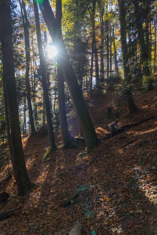 Sonnenberg Wolfsschlucht